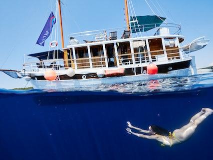 Standard Ship Swimming