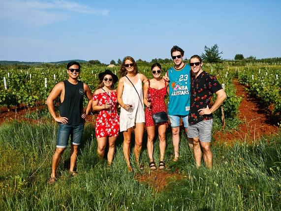 Stari Grad wine tasting in Croatia